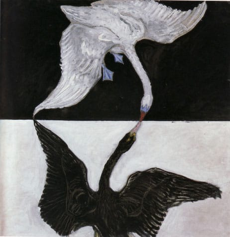 """the swan no 17 19151 """"العاهرة """" و """"ديزي كينيون"""".. المرأة في حياة الرجال"""