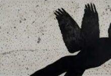 Sadik Kwaish Alfraji3 أغنيات للوحدة - سارة تيسدايل