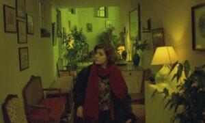 """689dfc97b85a546206cdf5342183a73b سينماتوغراف لفيلم """" حياة فيرونيكا المزدوجة """" للمخرج كريستوف كيشلوفسكي"""