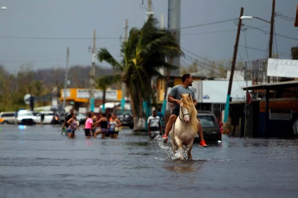 335285d1404f9caca258ffaf237c1842 بورتوريكو بعد إعصار ماريا   بالصور