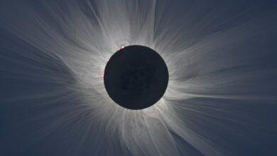 688566ec1f314b14fa33f3f446d24cf9 عندما تُظلم الشمس: الإجابة على 5 أسئلة عن كسوف الشمس