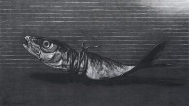 عبدلكي سمكة في الداخل السمكة في الداخل - ندى قطان